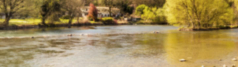 nature-blur